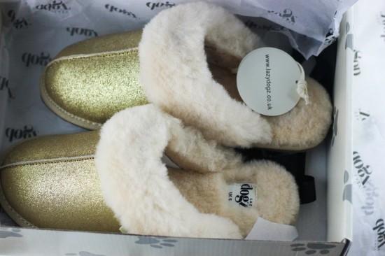 lazy-dogz-slippers-image