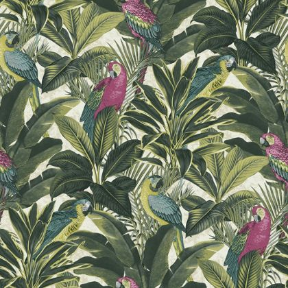 exotic-bird-pink-wallpaper-homebase-image
